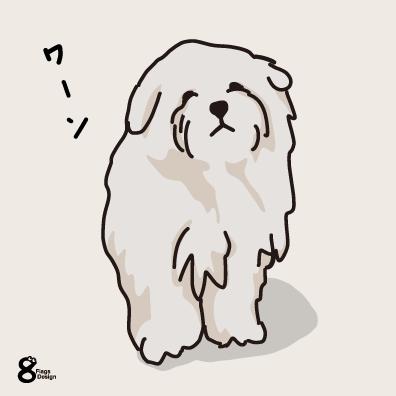 寂しがるムク犬(ホワイト)のキャッチ画像
