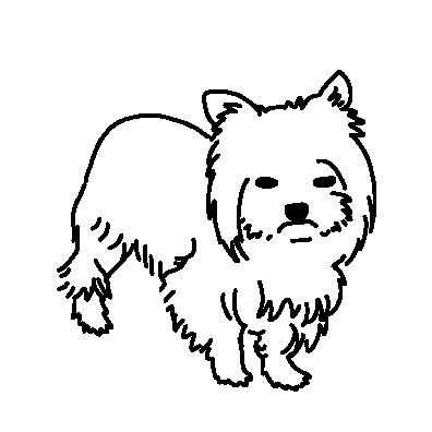 ぐずるヨークシャーテリア(ライン)