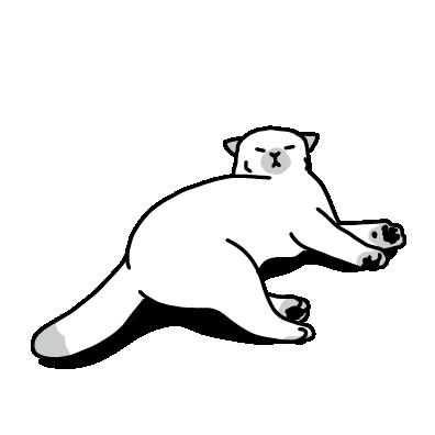 眠そうな猫(白)