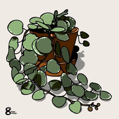 グリーンドラムの鉢(テラコッタ)のキャッチ画像