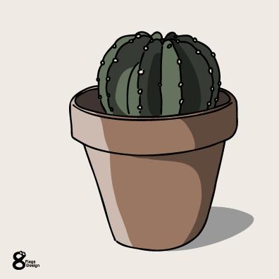 サボテンの鉢(テラコッタ)のキャッチ画像