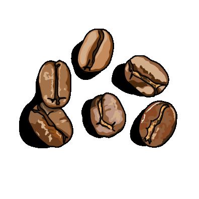 コーヒー豆ノーマル