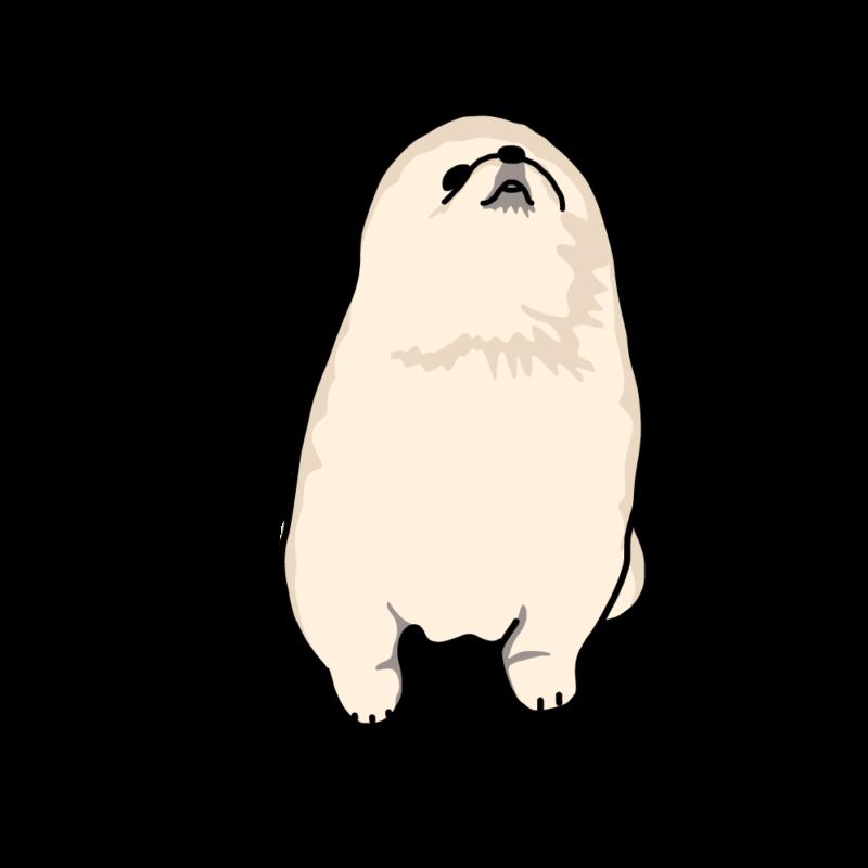 人狼の子供(ポメラニアン)ノーマル