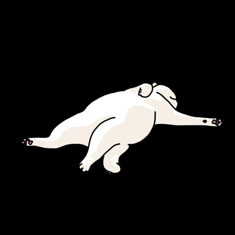 仰向けに寝るネコ(白)