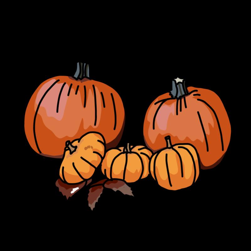 カボチャのお飾りオレンジ