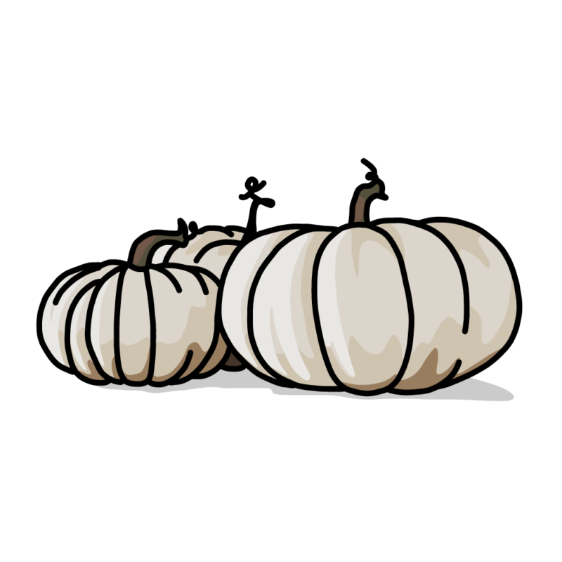 白いカボチャノーマル