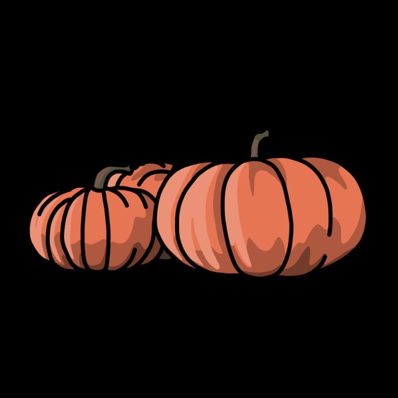 白いカボチャオレンジ