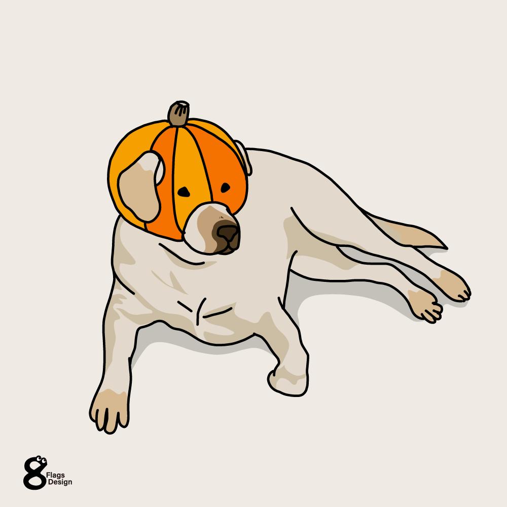 カボチャを被る犬のキャッチ画像
