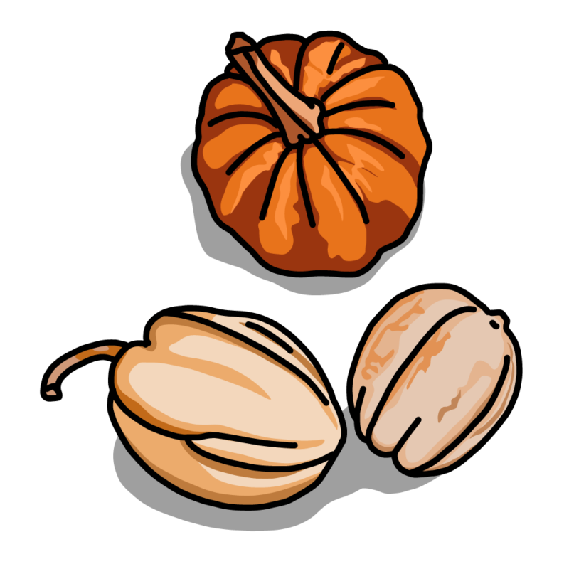 変わりカボチャ3種類オレンジ