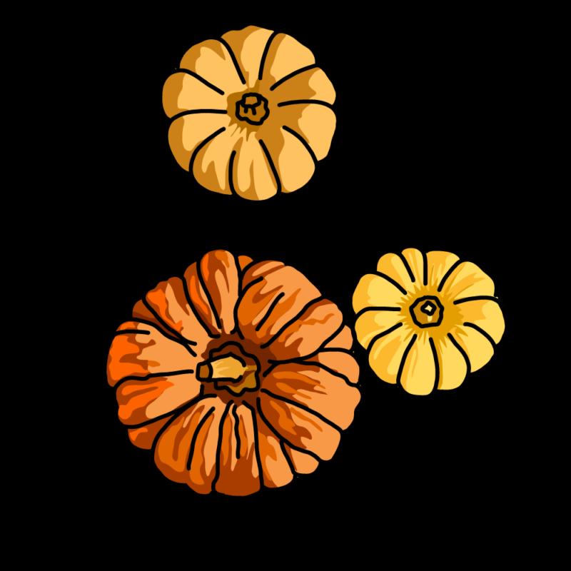 カボチャ3個のお飾りオレンジ