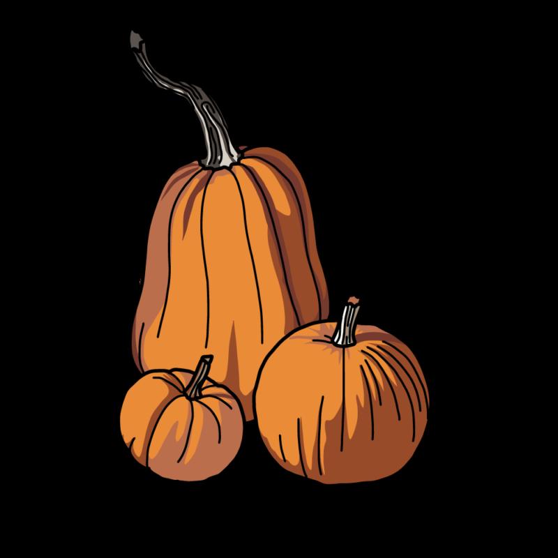 長いカボチャセットオレンジ