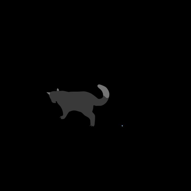 小走りネコブラック