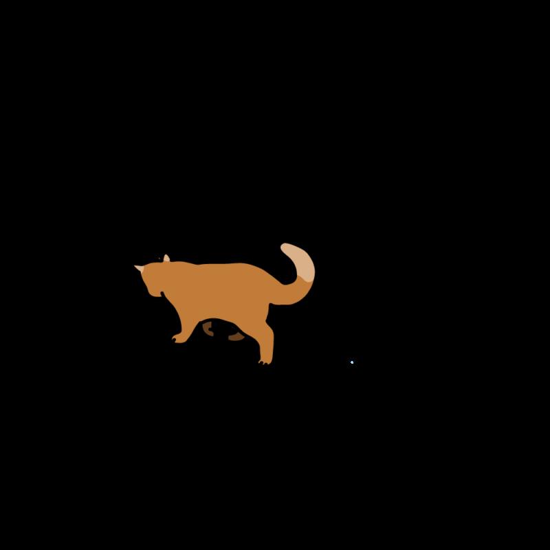 小走りネコ赤茶