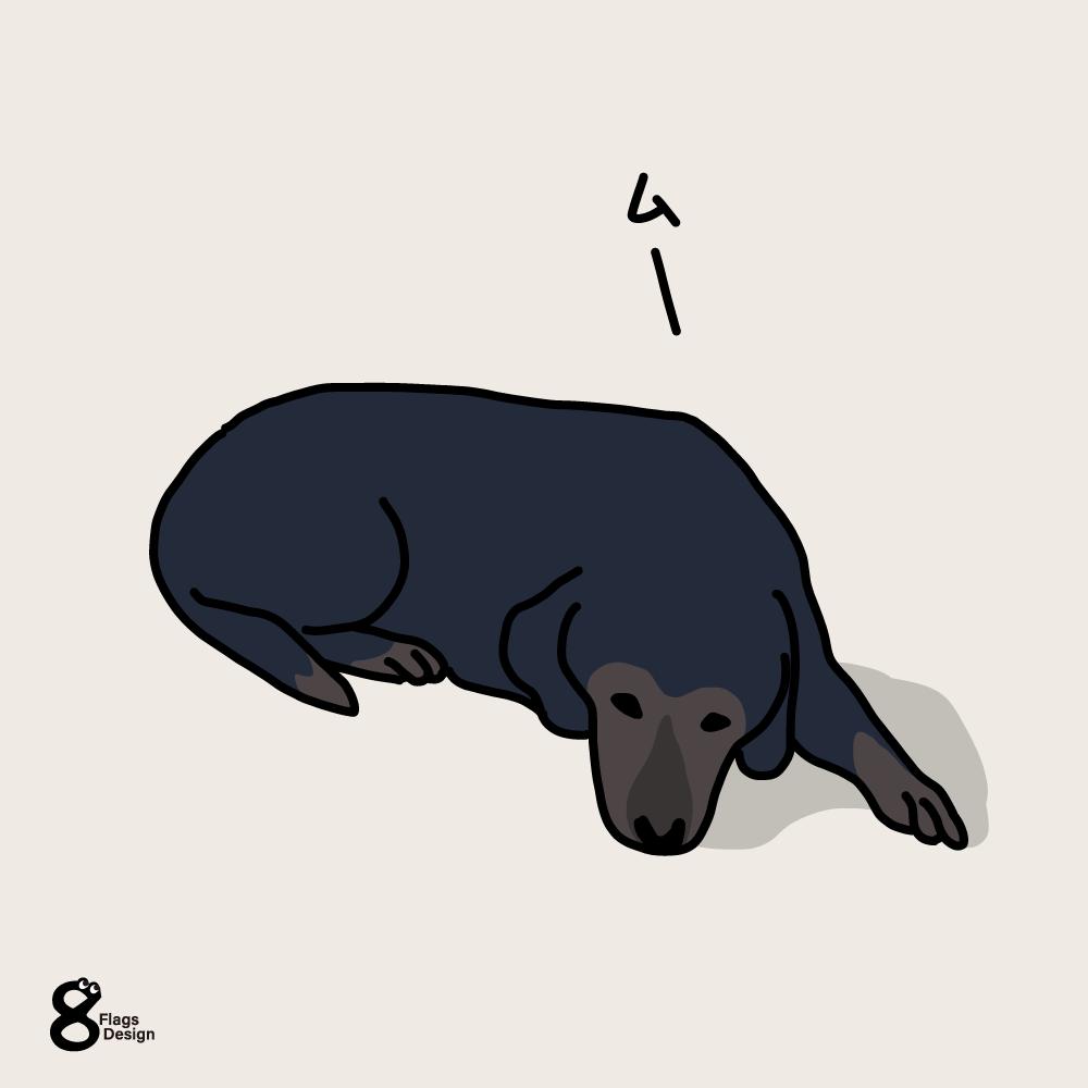 今日も、ふて寝する犬のキャッチ画像