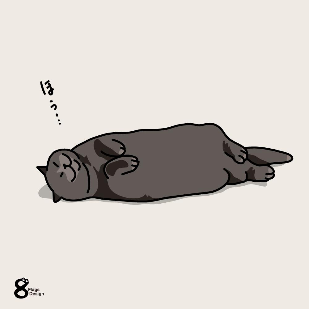 撫で待ちのネコのキャッチ画像