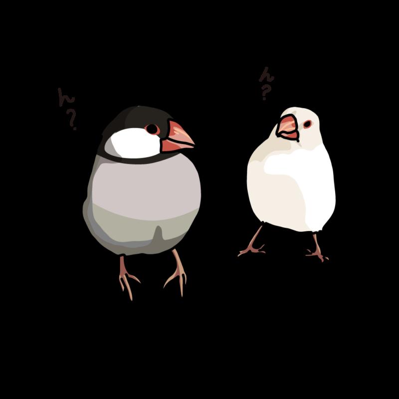 アホ毛の文鳥桜