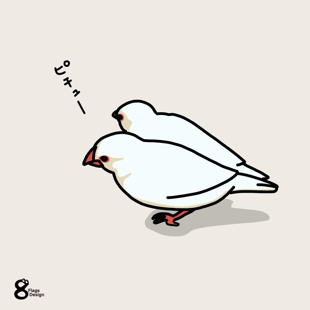 くっ付いている文鳥のキャッチ画像