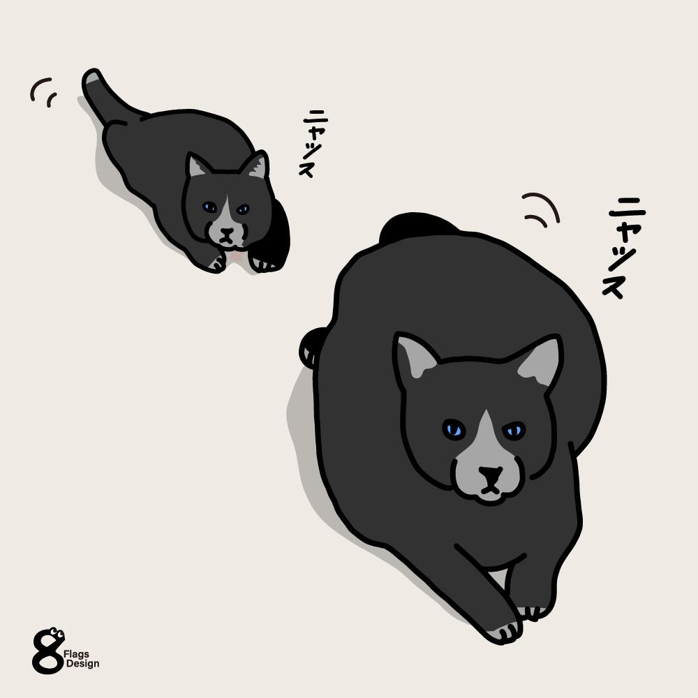 ほふく前進するネコのキャッチ画像