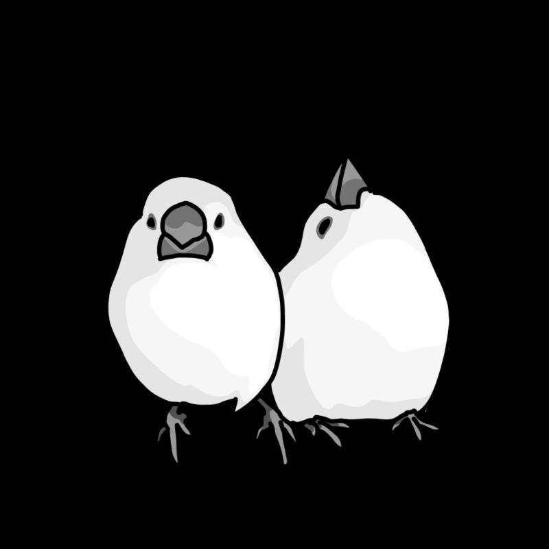 ルンルンしている文鳥ズモノクロ