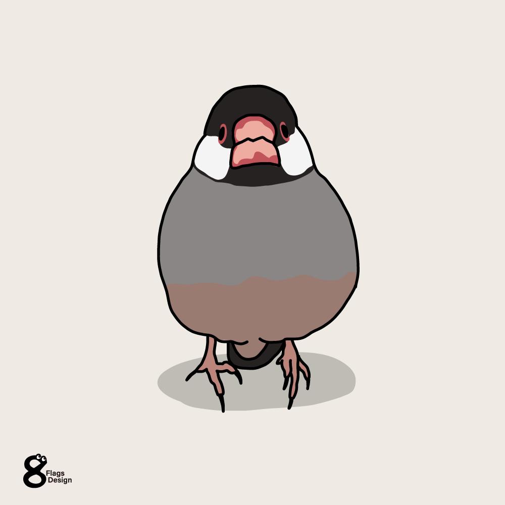 桜文鳥(無)のキャッチ画像