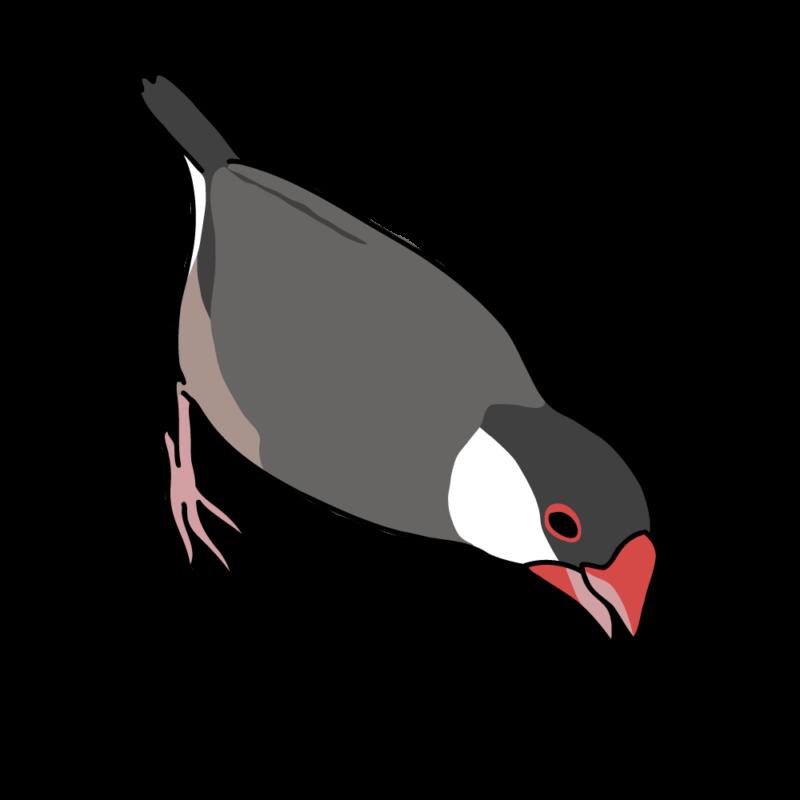 攻撃力12(文鳥さん)桜