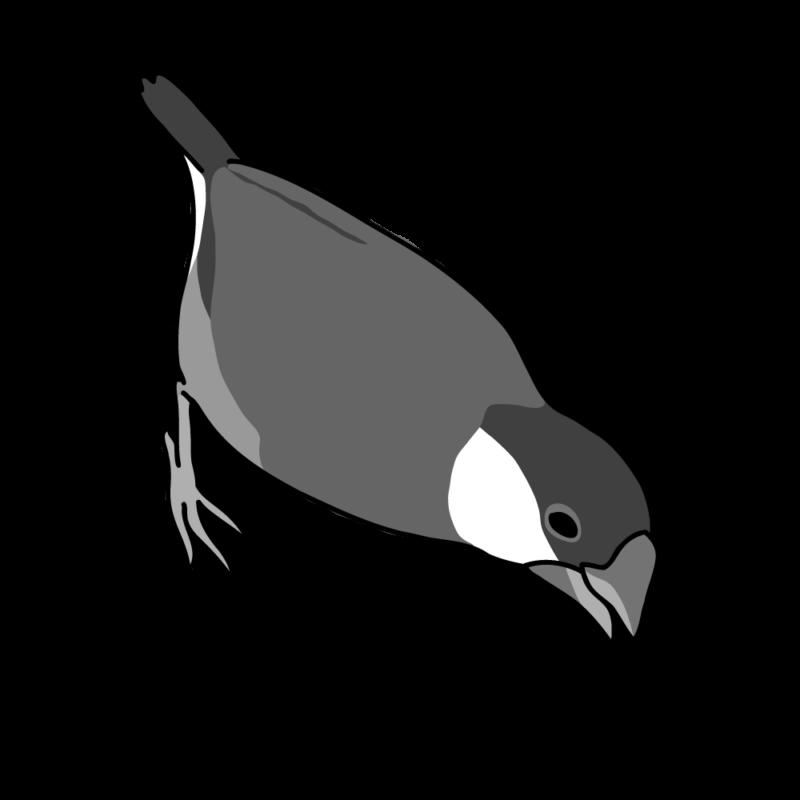 攻撃力12(文鳥さん)モノクロ