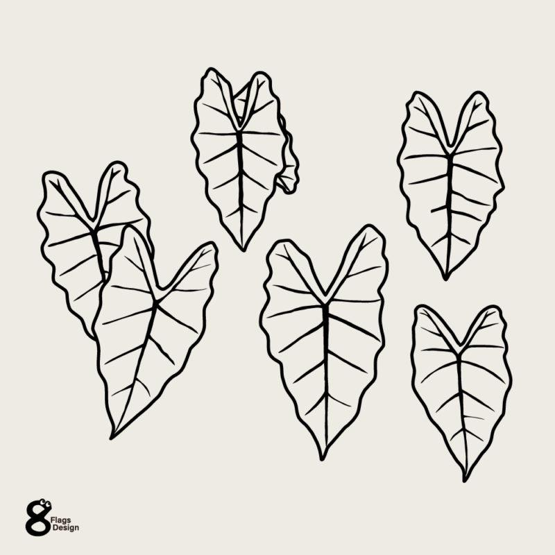 アロカシアの葉っぱセットライン