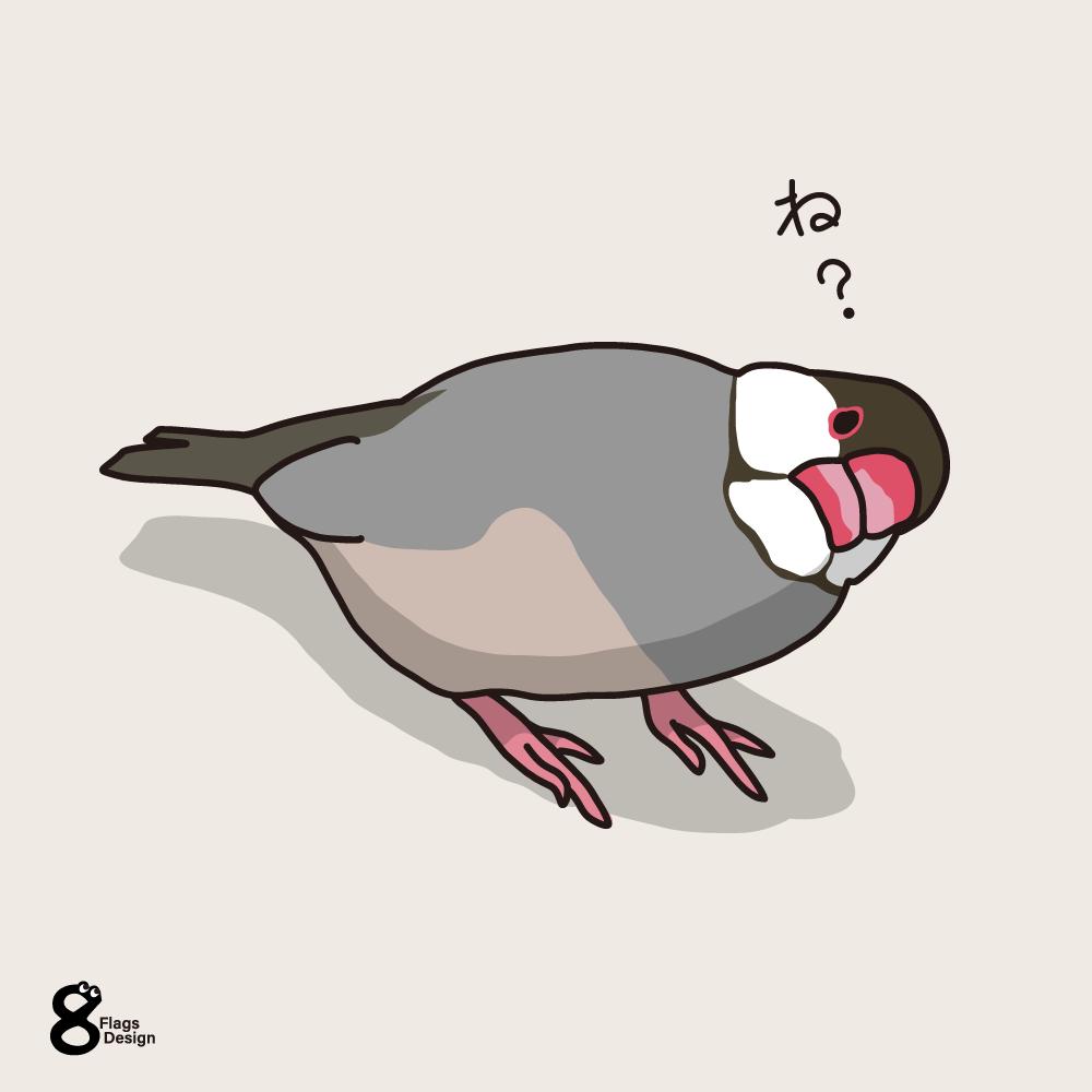 念押ししてくる文鳥のキャッチ画像