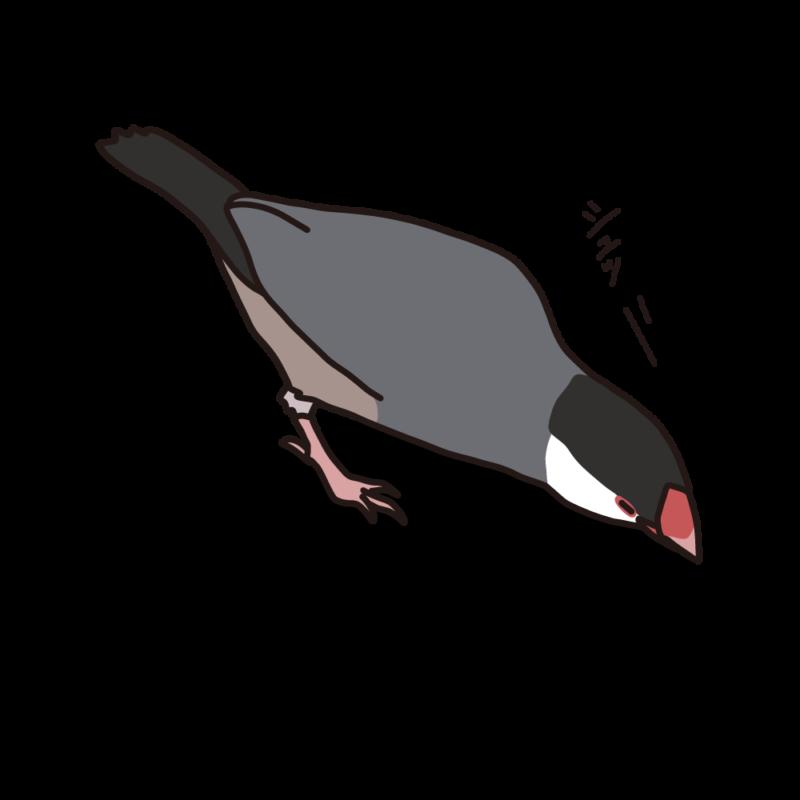 攻撃力23(文鳥さん)桜
