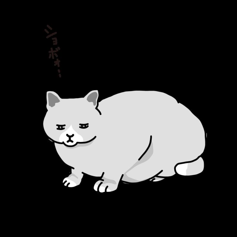 寝起きのネコグレー