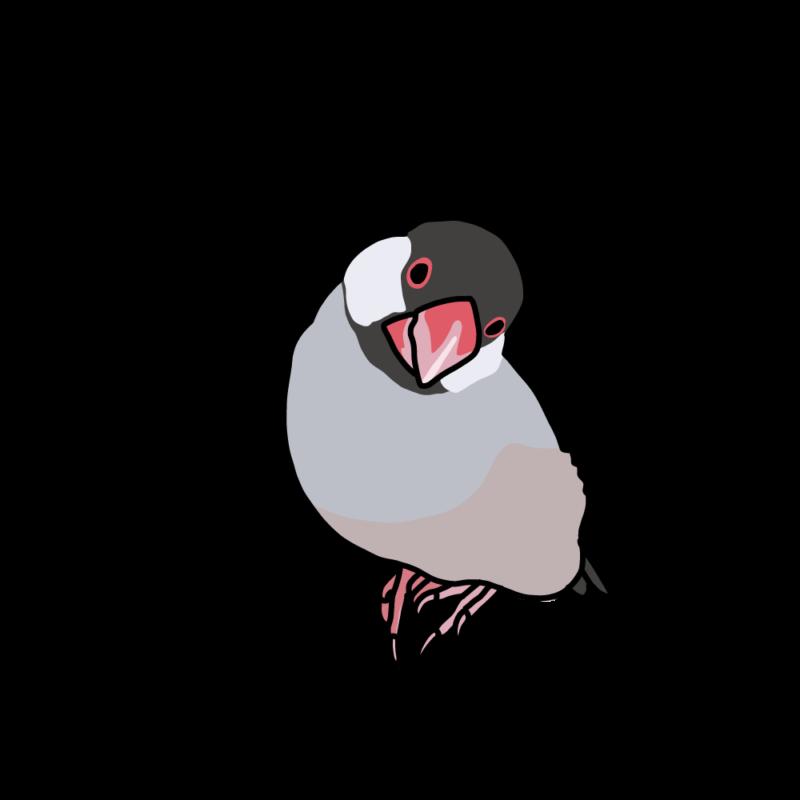 ぶりっ子文鳥桜