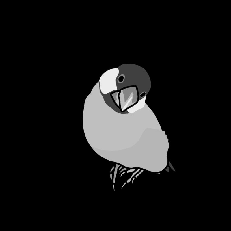 ぶりっ子文鳥モノクロ