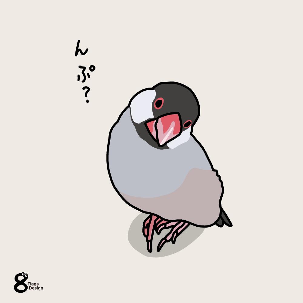 ぶりっ子文鳥のキャッチ画像
