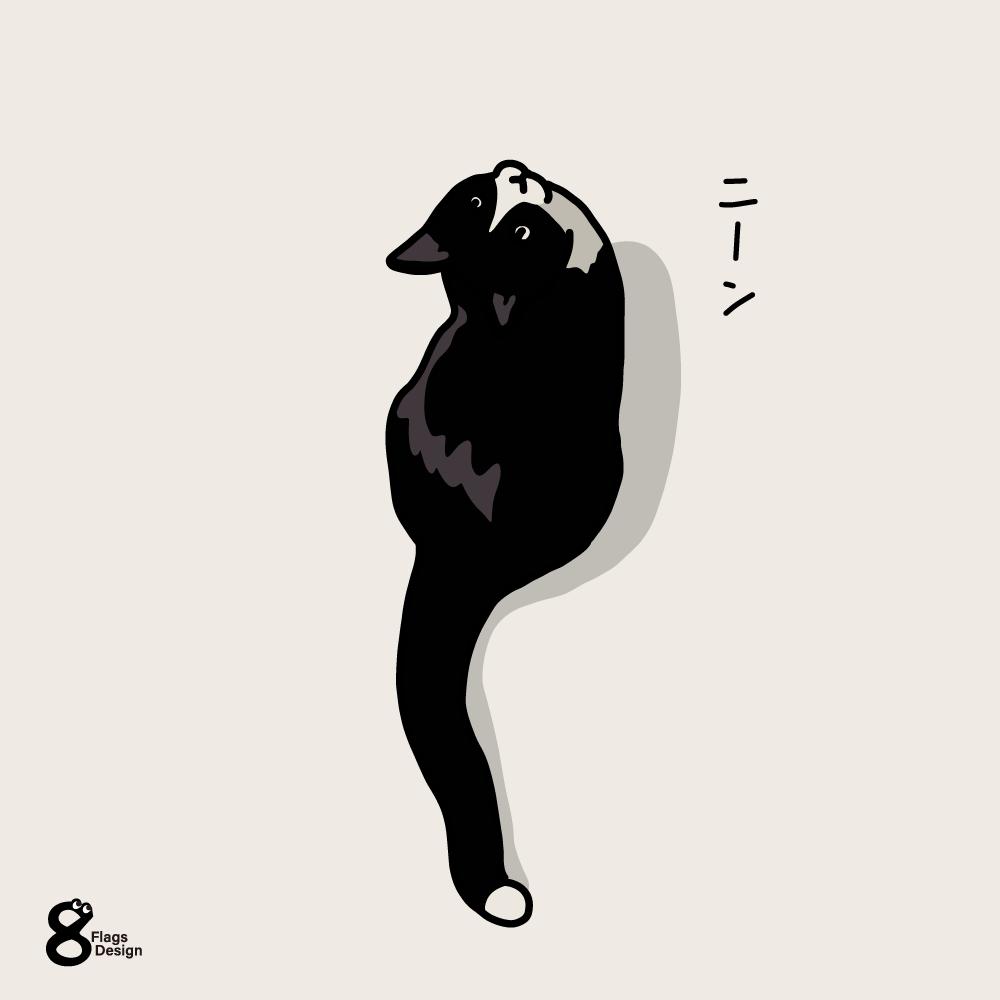 見上げるネコのキャッチ画像