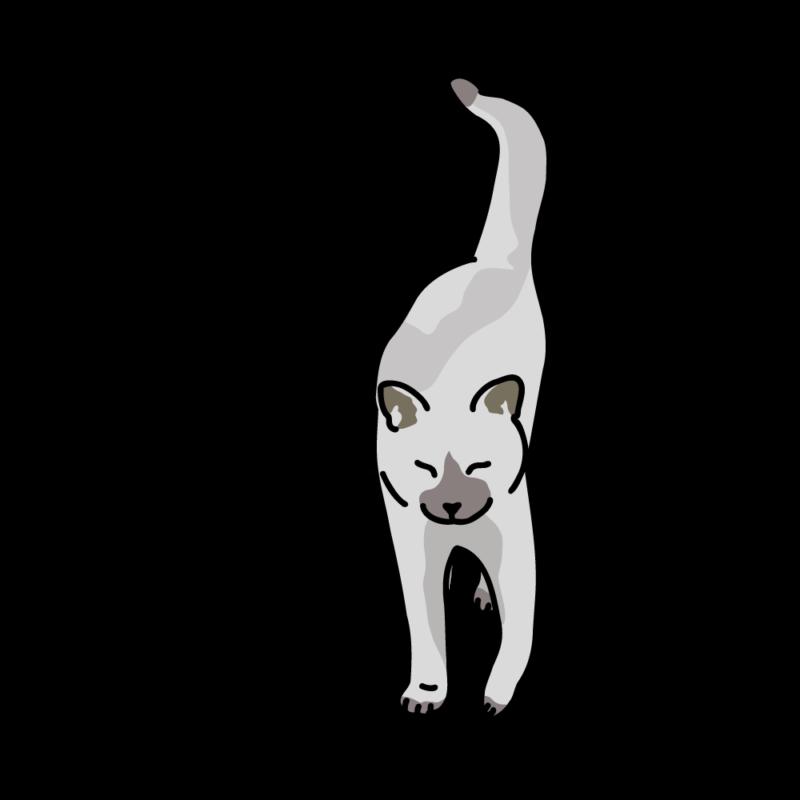 さんぽ帰りのネコホワイト