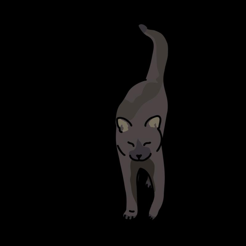 さんぽ帰りのネコ黒
