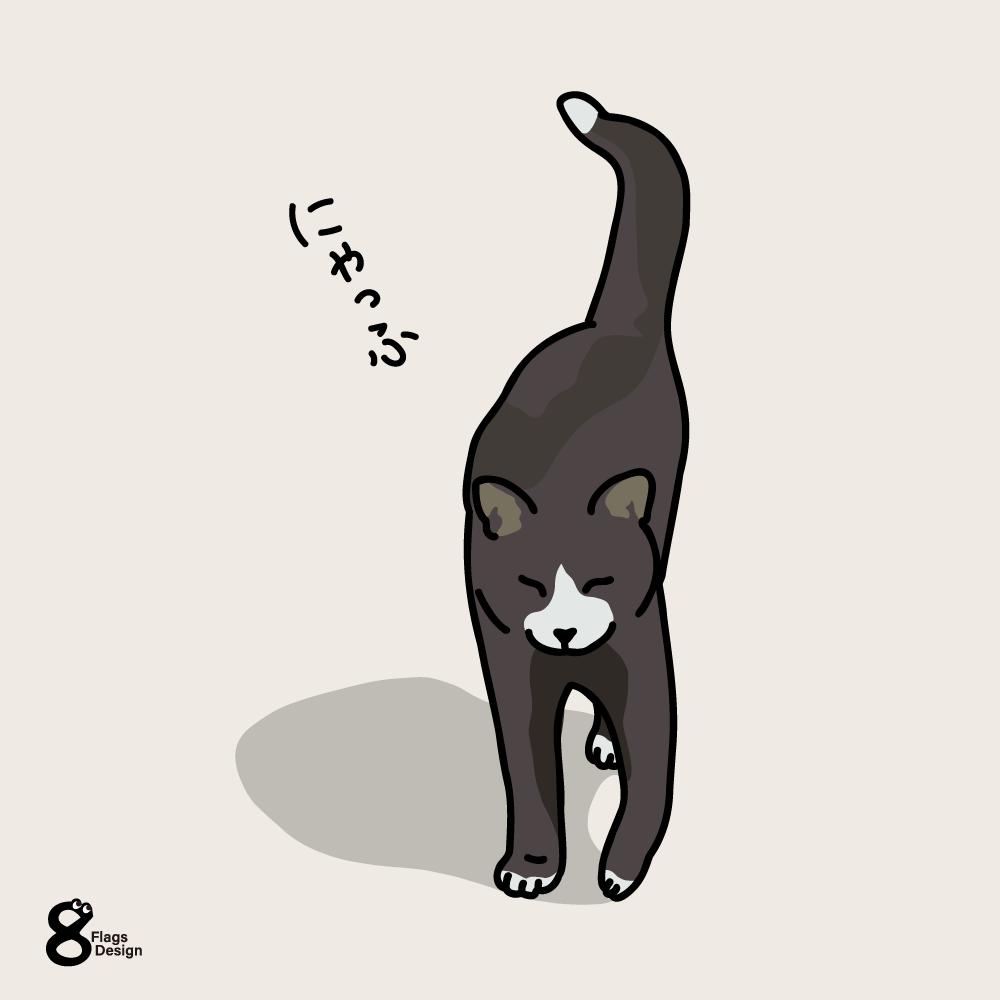 さんぽ帰りのネコのキャッチ画像