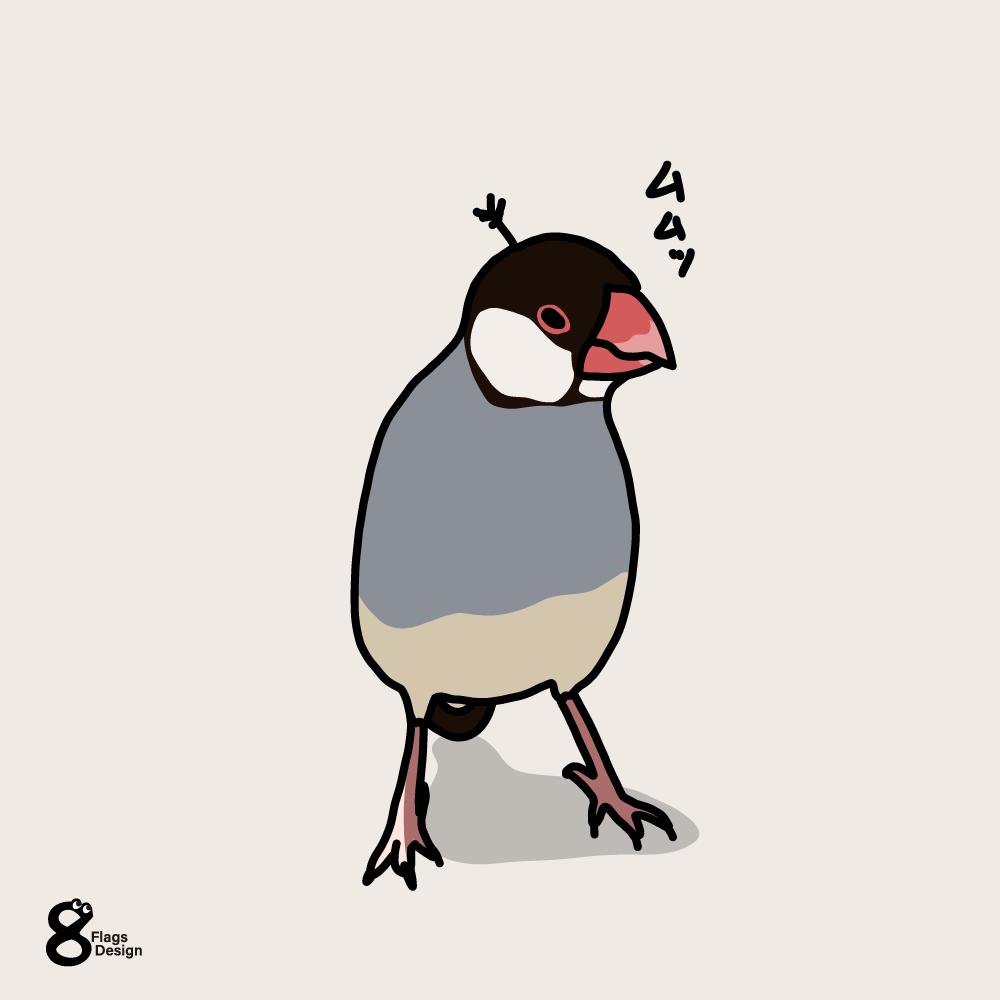 やる気満々の文鳥のキャッチ画像