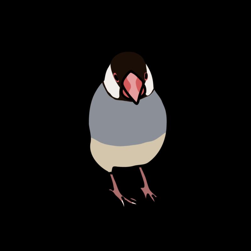 小悪魔な文鳥桜