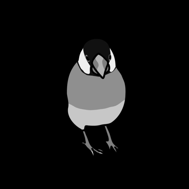 小悪魔な文鳥モノクロ