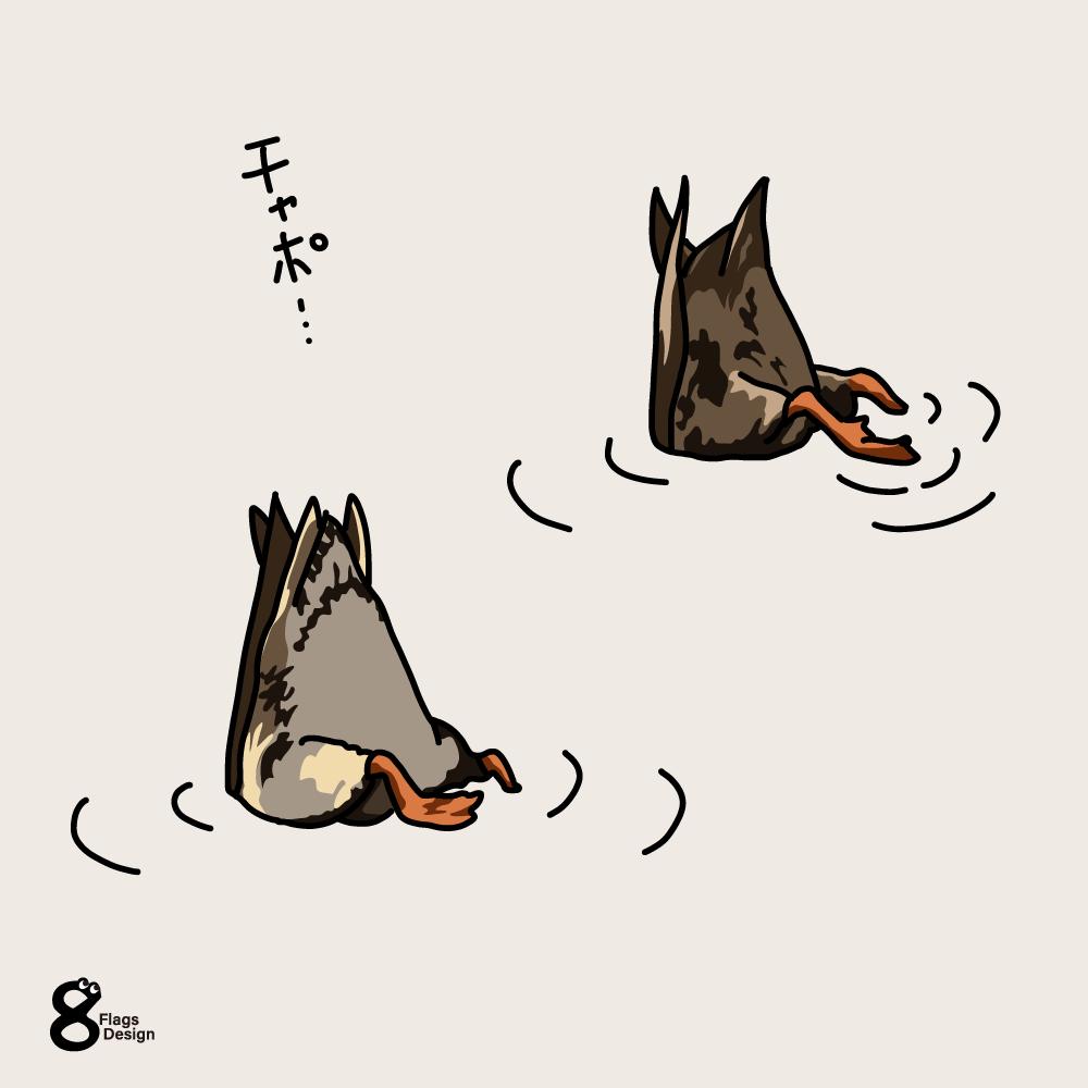 食事中のカモのキャッチ画像