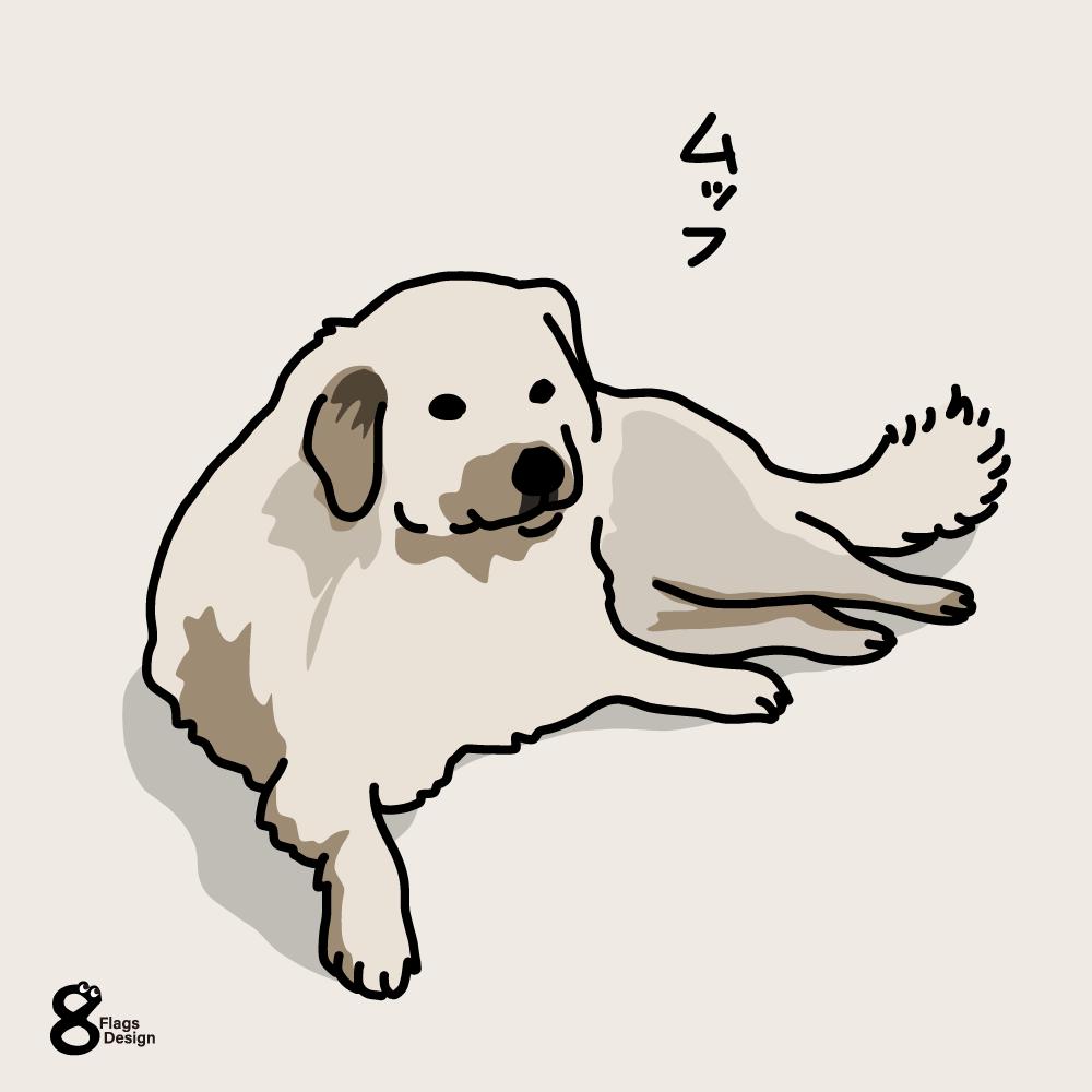 貫禄の大型犬(ラブラドール)のキャッチ画像