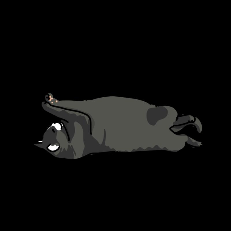ヘソ天で寝るネコ黒