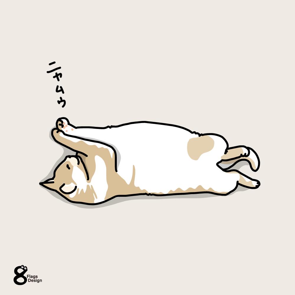 ヘソ天で寝るネコのキャッチ画像
