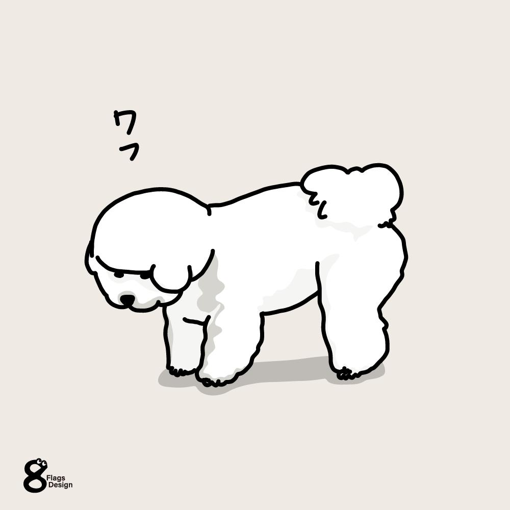 何か見つけた犬(ビションフリーゼ)のキャッチ画像