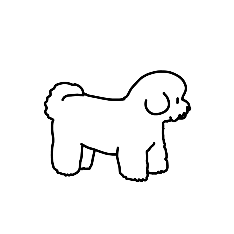 綿犬(ビションフリーゼ)ライン