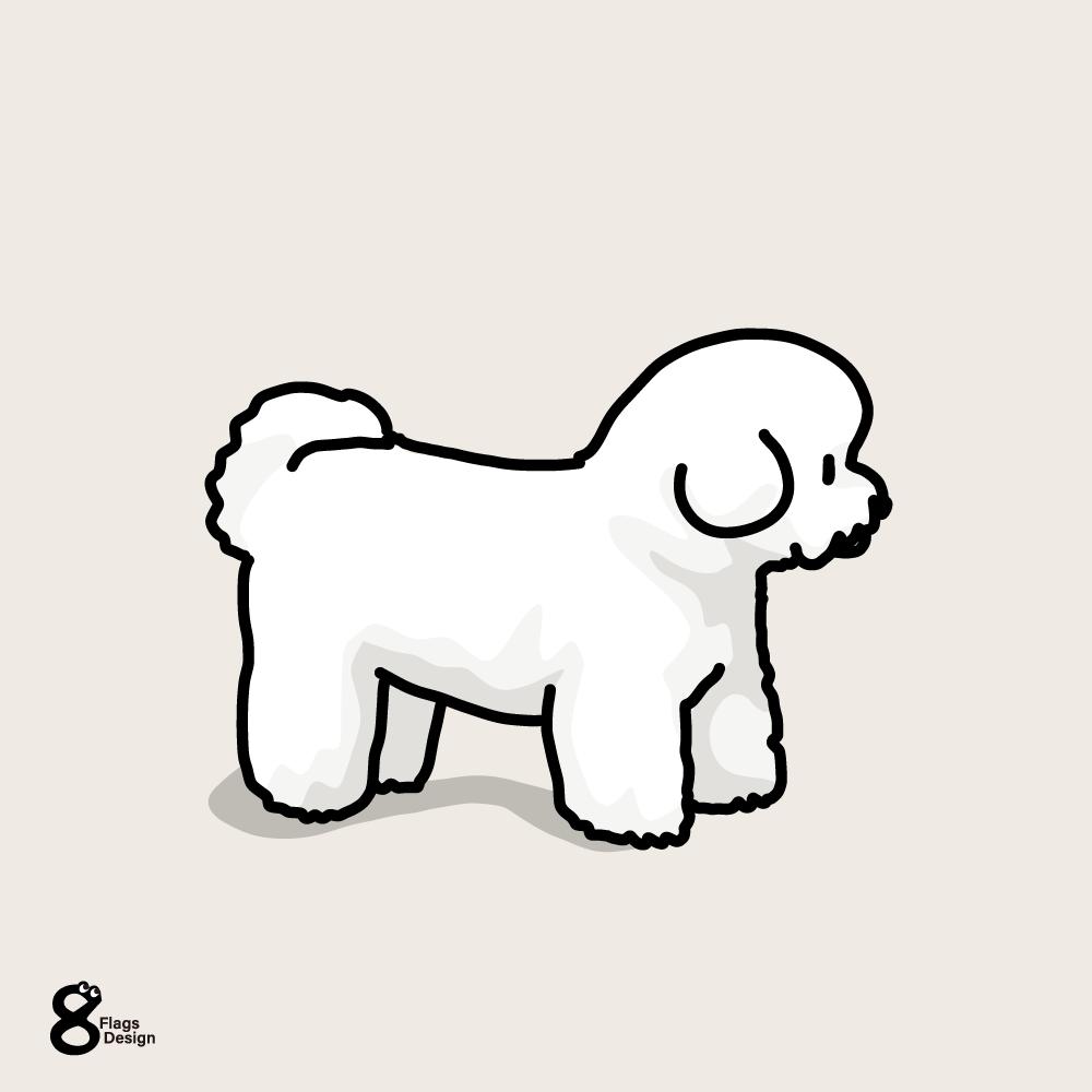 綿犬(ビションフリーゼ)のキャッチ画像