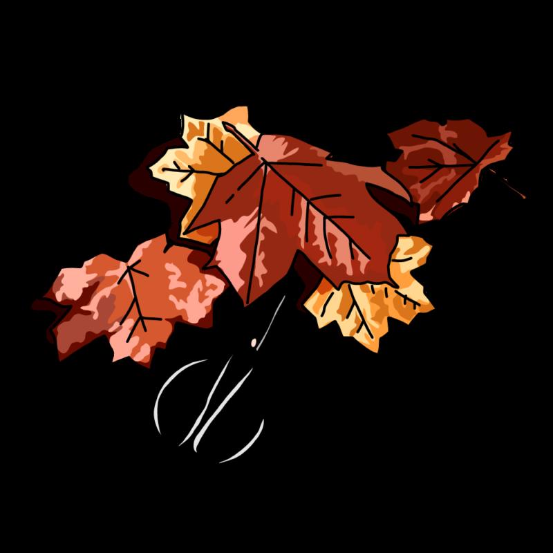 紅葉と裁ちバサミレッド