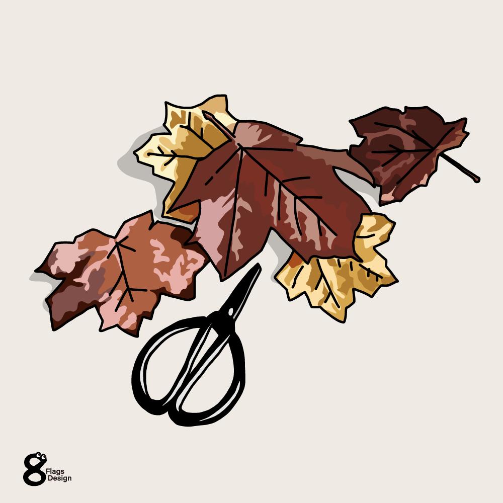 紅葉と裁ちバサミのキャッチ画像