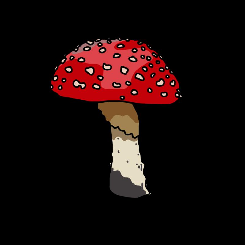 キノコ(毒)ノーマル